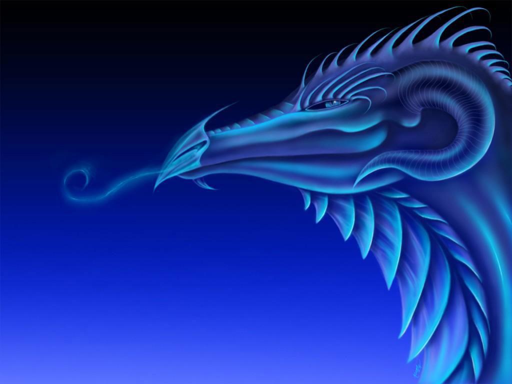 bluedragonprofile